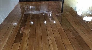 Iowa Concrete Wood Floor